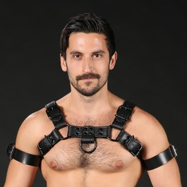Clothing, Mr. S Leather, Harness, Leather, Harness, Leather